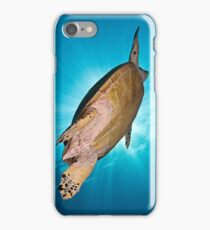 Hawksbill Turtle iPhone Case/Skin
