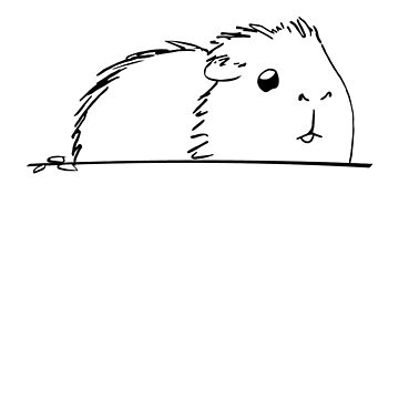 Sketched Guinea Pig! by Jonnio