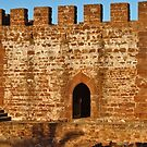 Medieval Castle of Silves by AngeloDeVal