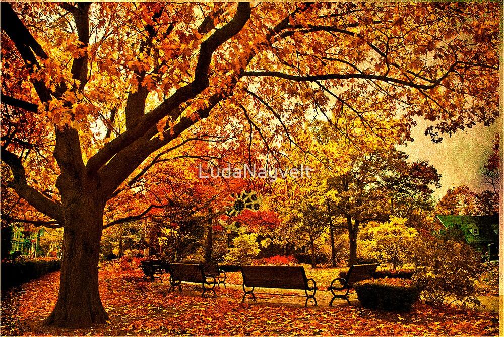 In city garden... by LudaNayvelt