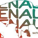 Denali National Park Alaska Souvenirs by Skylar Harris