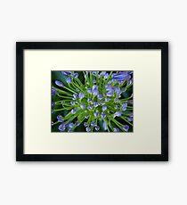 Purple Flower Floral-(Macro) Framed Print