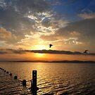 Moods of Beautiful Lake Macquarie NSW Australia by Bev Woodman