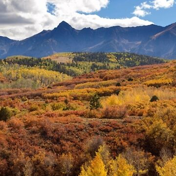 Colorado Autumn Panorama Colorful Bliss by mrbo