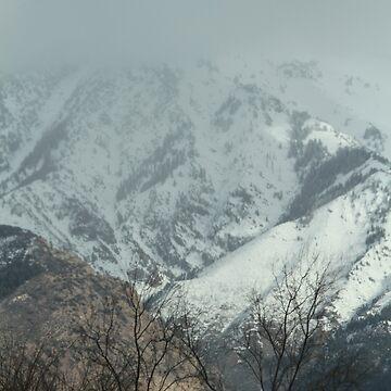 Utah #3 by WFP87