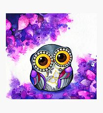 Owl in Purple Blossoms Photographic Print