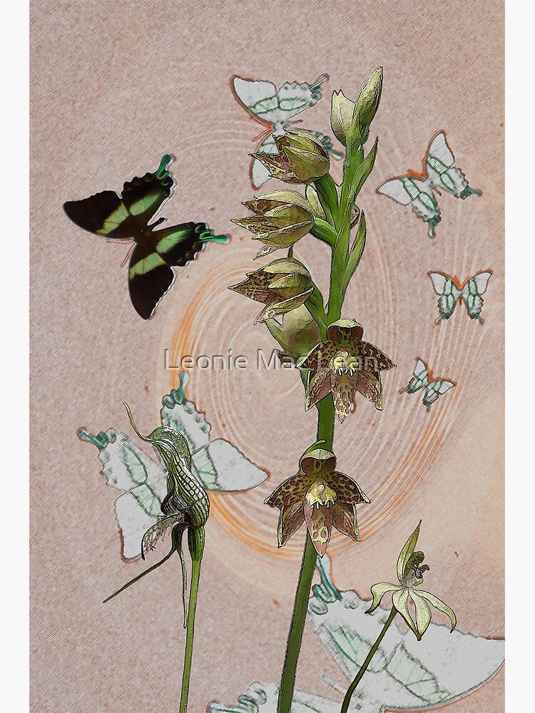 Butterflies & Orchids 3 by yallmia