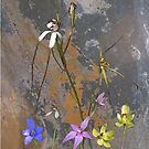 Meelup Orchids with Rock by Leonie Mac Lean