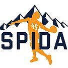 Spida Mountains 1 by SaturdayAC