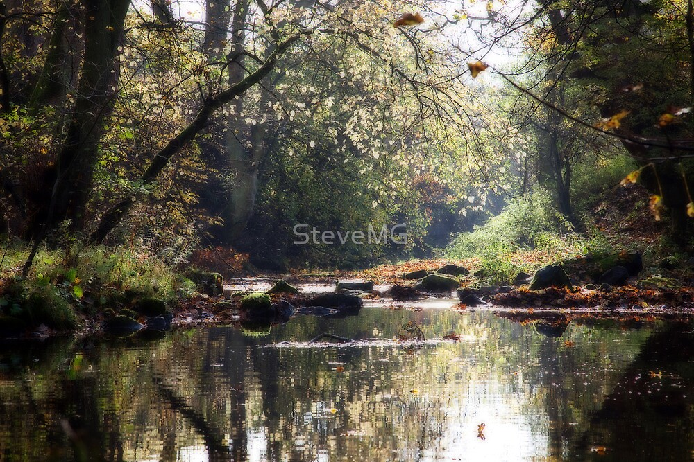 The Young Nidd by SteveMG