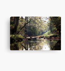 The Young Nidd Canvas Print