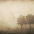 Old by Alan Watt