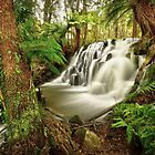 Lockwood Creek Falls, Tasmanien von Kevin McGennan