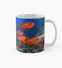 Bigeyes Mug
