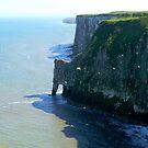 Bempton Cliffs In Springtime, Yorkshire Coast by mcworldent