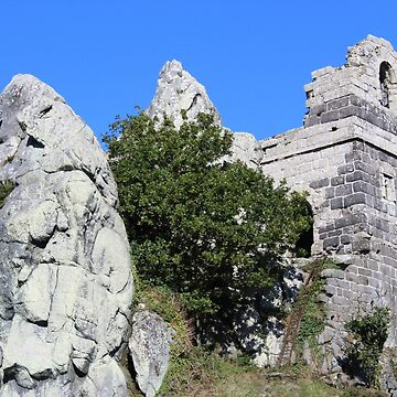 ROCHE ROCK by cleothejug123
