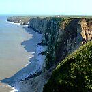 Bempton Cliffs Towards Thornwick Bay, Yorkshire Coast by mcworldent