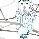 Snow Owl by GoedBlauw