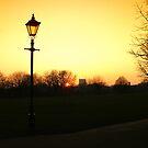 Orange Glow by Lisa Williams