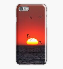 Sunset & Birds iPhone Case/Skin