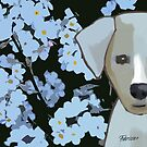 FORGET ME NOT by Fabriziocruz