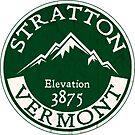 SKIING STRATTON MOUNTAIN VERMONT SKI SNOWBOARDING MOUNTAIN LONDONDERRY by MyHandmadeSigns