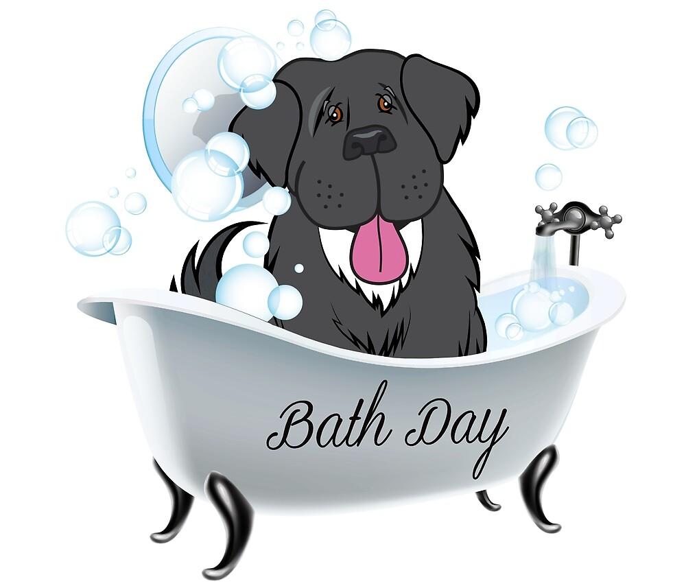 Newfoundland Dog Bath Day! by Christine Mullis