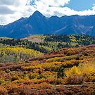 Colorado Color Bonanza by Bo Insogna