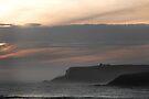 flinders coastline by Anthony Mancuso