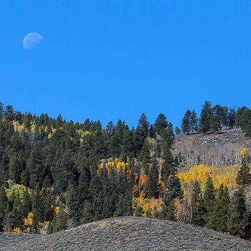 Autumn Moon by mrbo