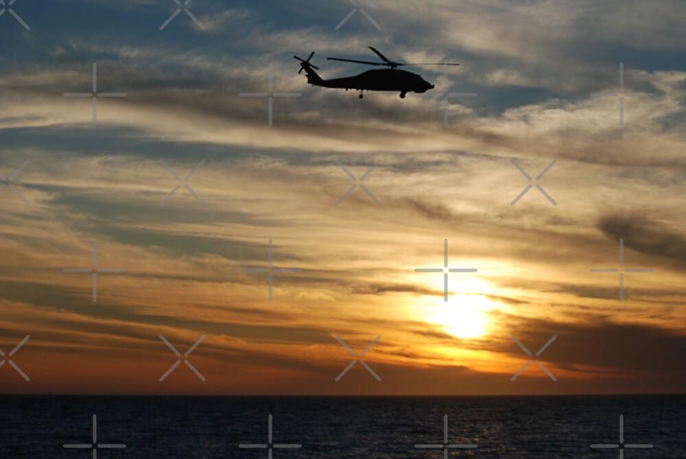 Sunset Flight by Michelle *
