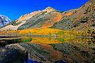 Bishop North Lake Technicolor Fall by photosbyflood