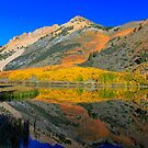 Bishop North Lake Technicolor Fall by photosbyflood