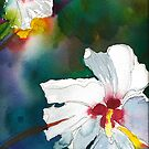 Hibiscus in Whites by Sally Griffin
