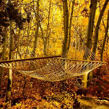 Hammock Among Autumn Leaves by lenzart