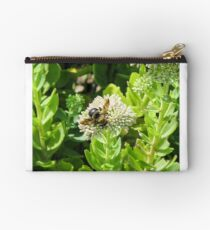 bumble bee Studio Pouch