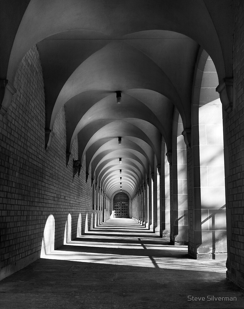 Corridor of Light & Shadows by Steve Silverman