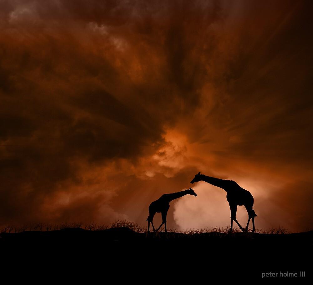 133 by peter holme III