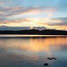 Speers Point Sunset - NSW Australia by Bev Woodman