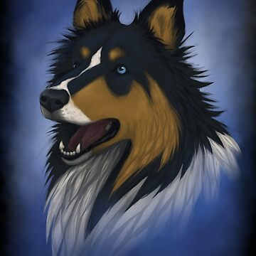 Collie by Silverti