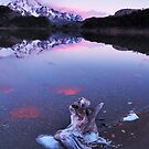 Blue Ice and Pink Clouds, Argentina by Robin Whalley