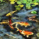 Koi Pond by Ljartdesigns