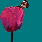 A Simple Flower 2 by Linda Miller Gesualdo