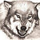 A wolf by Alleycatsgarden