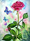The Scent of a Rose by Linda Callaghan