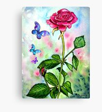 The Scent of a Rose Canvas Print