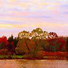 On Echo Lake  by fiat777