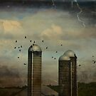 Old Silos by gothicolors