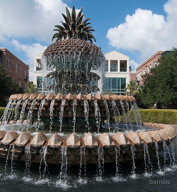 Pineapple Fountain  by barnsis