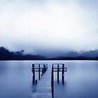 Pier at the LakeTe Anau ... New Zealand  by Angelika  Vogel